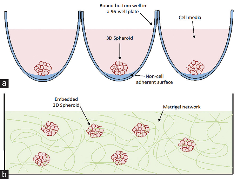 """A Review on the Recent Advancement in """"Tumour Spheroids-on-a-Chip"""